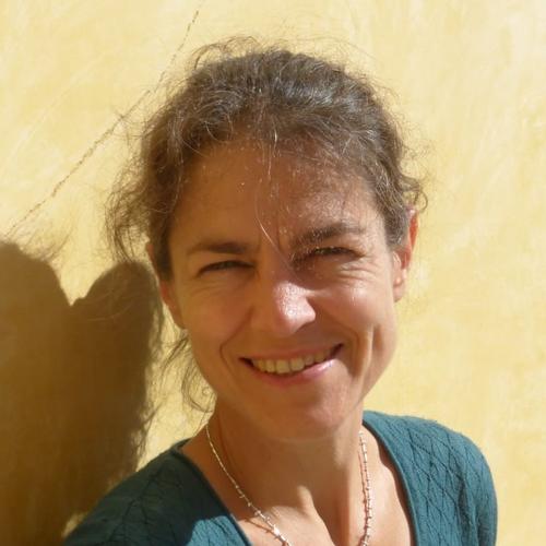 Tine Missine